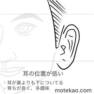 耳の位置が低い